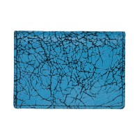 Yes-Ive-Crawled-On-Glass-Card-Holder-Neon-Blue